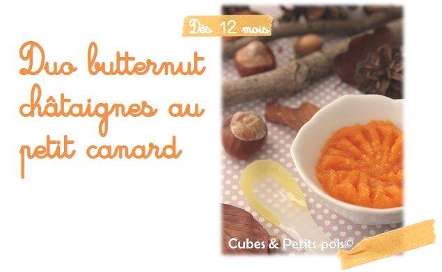 Recette bebe : Duo Butternut chataigne canard