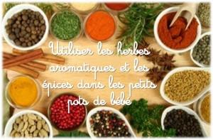 Herbes aromatiques épices pour bébé 00